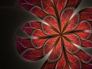 Pétalos de una flor abstracta