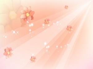 Rayos de sol iluminan las flores