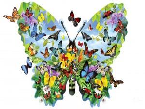 Familia de mariposas