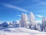 Bonito paisaje nevado