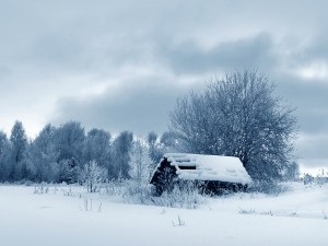 Pequeña cabaña cubierta de nieve