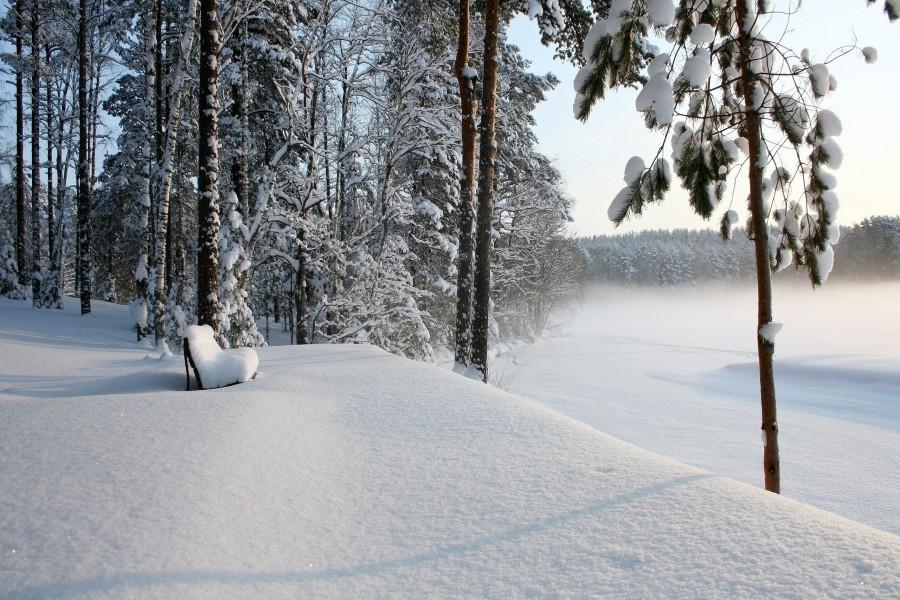 Banco cubierto de nieve