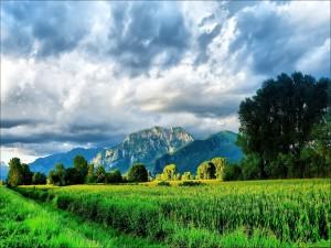Valle verde bajo las montañas