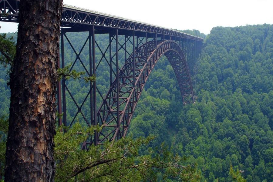 Puente cruzando el verde valle