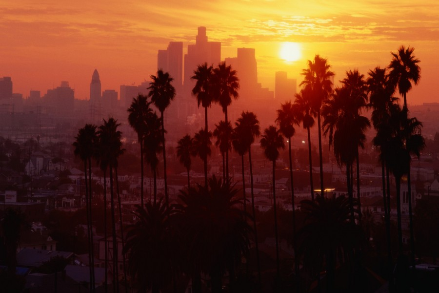 Hermosa vista con palmeras al atardecer
