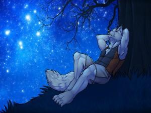 Hombre lobo romántico mirando el cielo estrellado