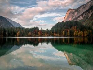 Bosque y montañas bajo un cielo nublado