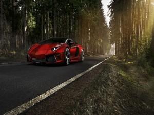 Lamborghini Aventador rojo en un camino forestal