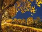 Dorado paisaje otoñal