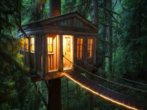 Cabaña entre árboles