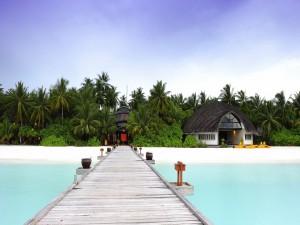 Muelle de madera que conduce a una playa exótica