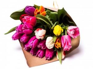 Ramo de tulipanes de varios colores