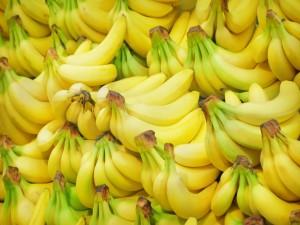Racimos de plátanos