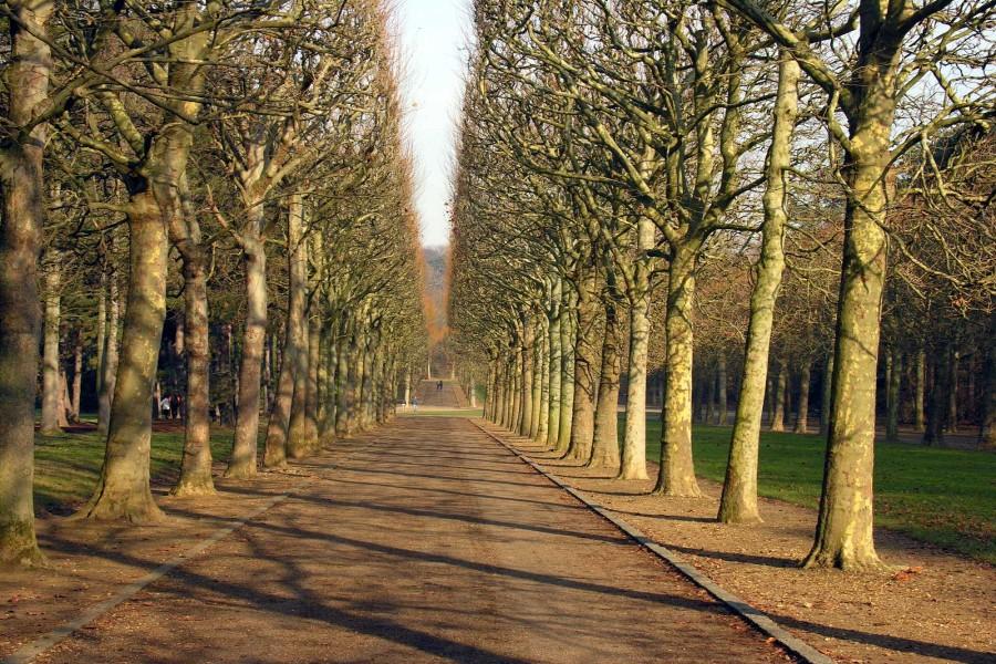Parque de Sceaux (Francia)