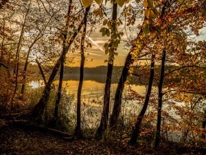 Lago en otoño
