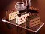 Exquisitos pasteles de chocolate