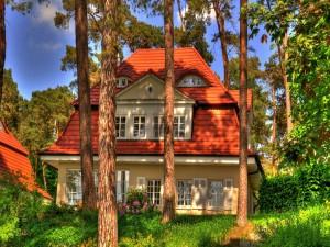 Hermosa casa entre árboles