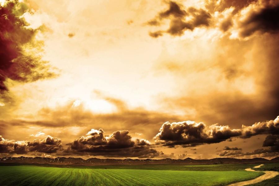 Cielo dorado sobre el campo verde