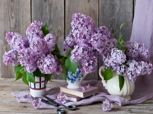 Floreros con ramos de lilas