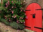 Rosas de color rosa en una puerta roja