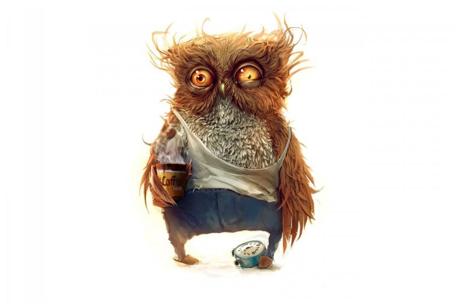 Búho tomando café