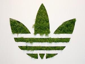 Logo de Adidas con hojas verdes
