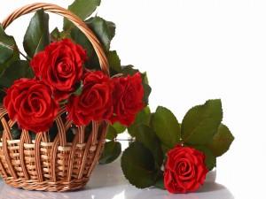 Cesta con rosas de color rojo