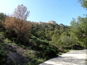 Camino de subida al Castillo de Santa Bárbara, Alicante (España)