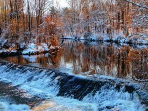 Temporada invernal