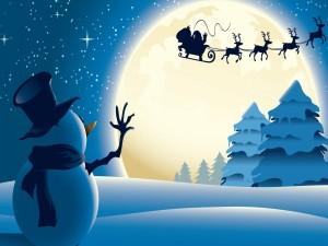 Papá Noel en su trineo