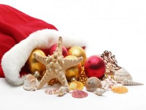 Adornos en el gorro de Papá Noel