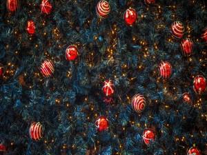 Bolas rojas y luces de colores en el árbol de Navidad
