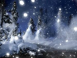 Feliz noche de invierno