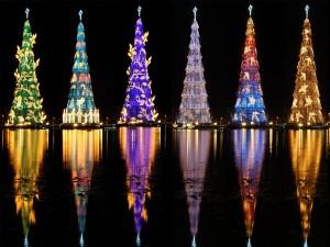 Árboles de Navidad iluminados que se reflejan en el agua