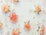 Rosas sobre la madera