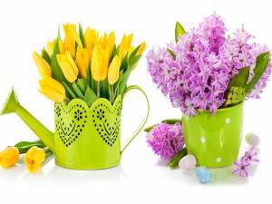 Ramos de tulipanes y jacintos