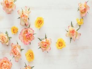 Preciosas flores sobre una madera