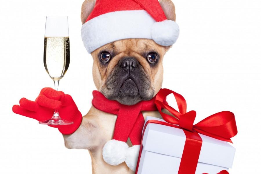 Brindando por la Navidad