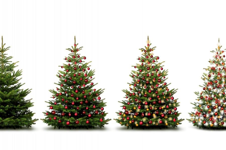 Vistosos árboles adornados para la Navidad