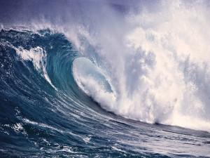 Impresionante ola en el mar
