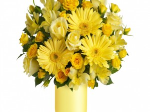 Astromelias, rosas y gerberas amarillas en un recipiente